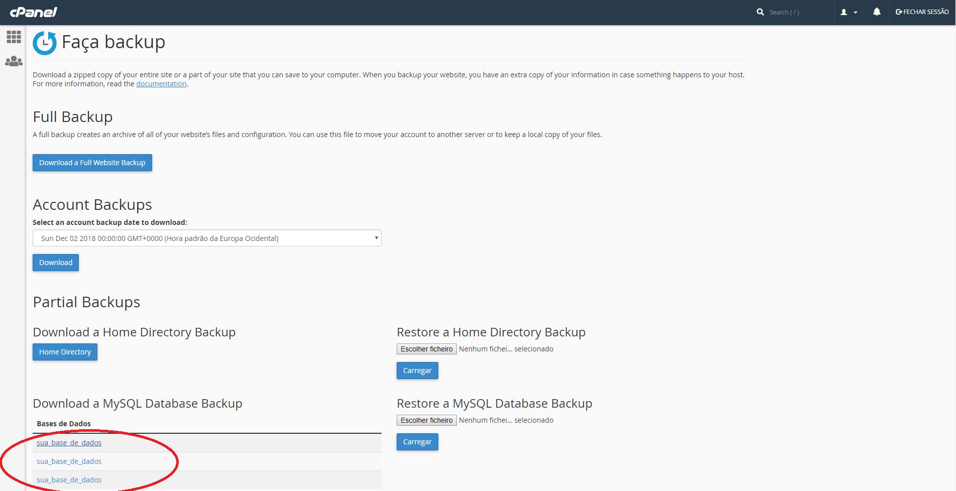 Atualização do PHP Backup Completo cPanel